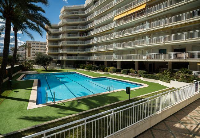 Apartamento en Playa de Gandía - 28. AG AGUAMARINA 5