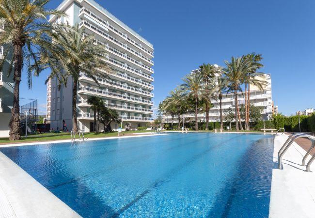 Ferienwohnung in Playa de Gandía - 44. AG FLORIDA 8