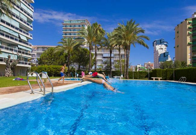 Апартаменты на Playa de Gandía - 44. AG FLORIDA 8