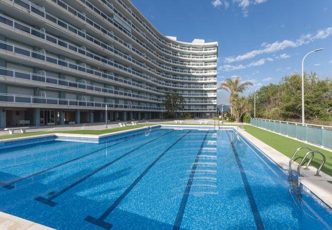 Апартаменты на Playa de Gandía - 32. AG AIGUABLAVA 5-3