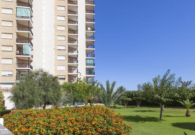 Апартаменты на Playa de Gandía - 42. AG PRESIDENTE 9A